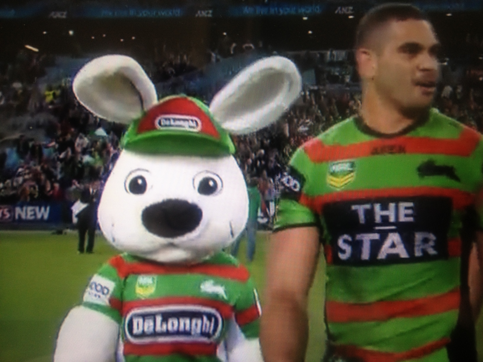 South Sydney Rabbitohs They Wear The Red And Green Traveling With Jared