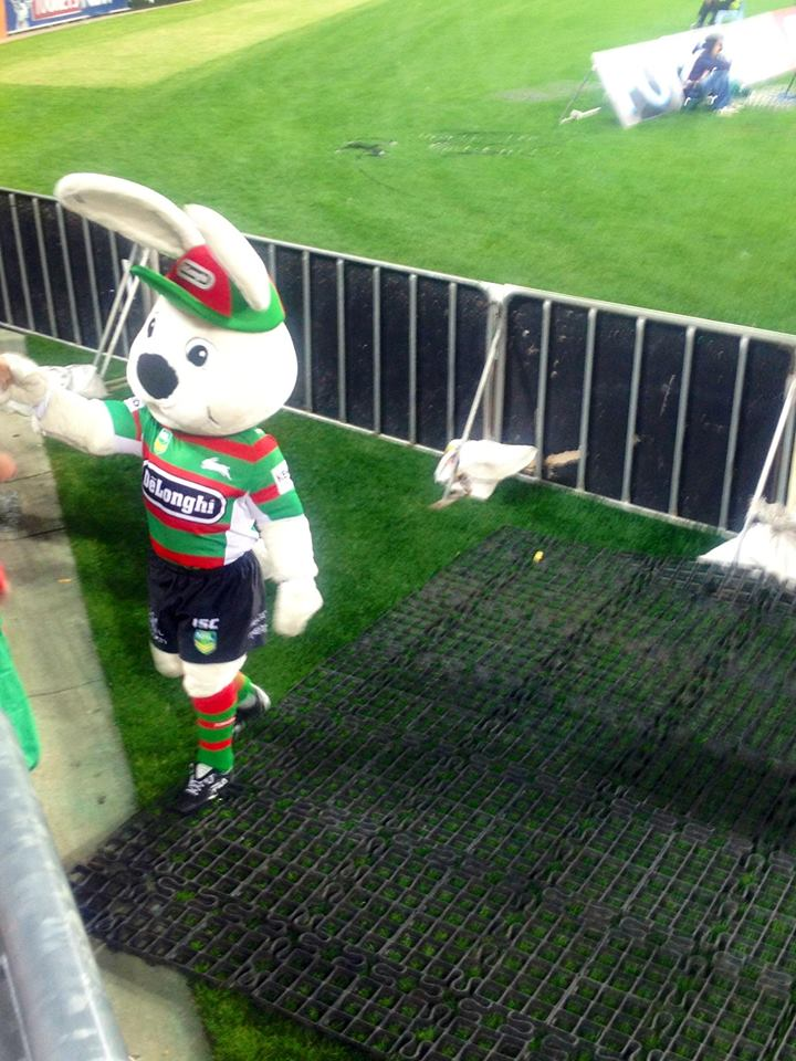"""Shake hands, or rather, paws, with Australia's biggest bunny!"""