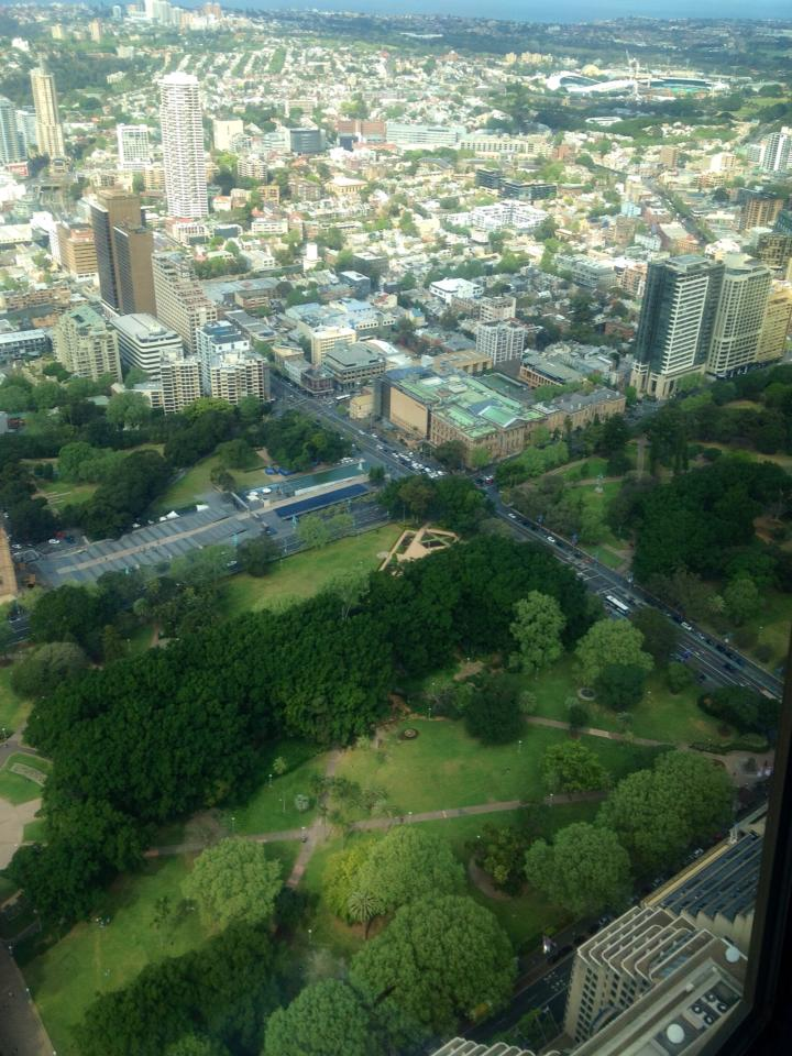 Hyde Park, as seen from the top of Sydney Tower