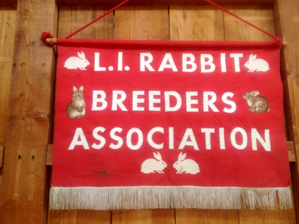 LI-RBA welcomes you to the LI Rabbit Show!