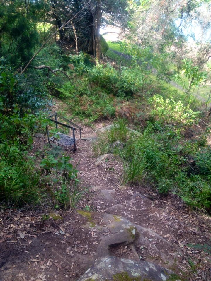 This small staircase gives hikers a little help up the path...