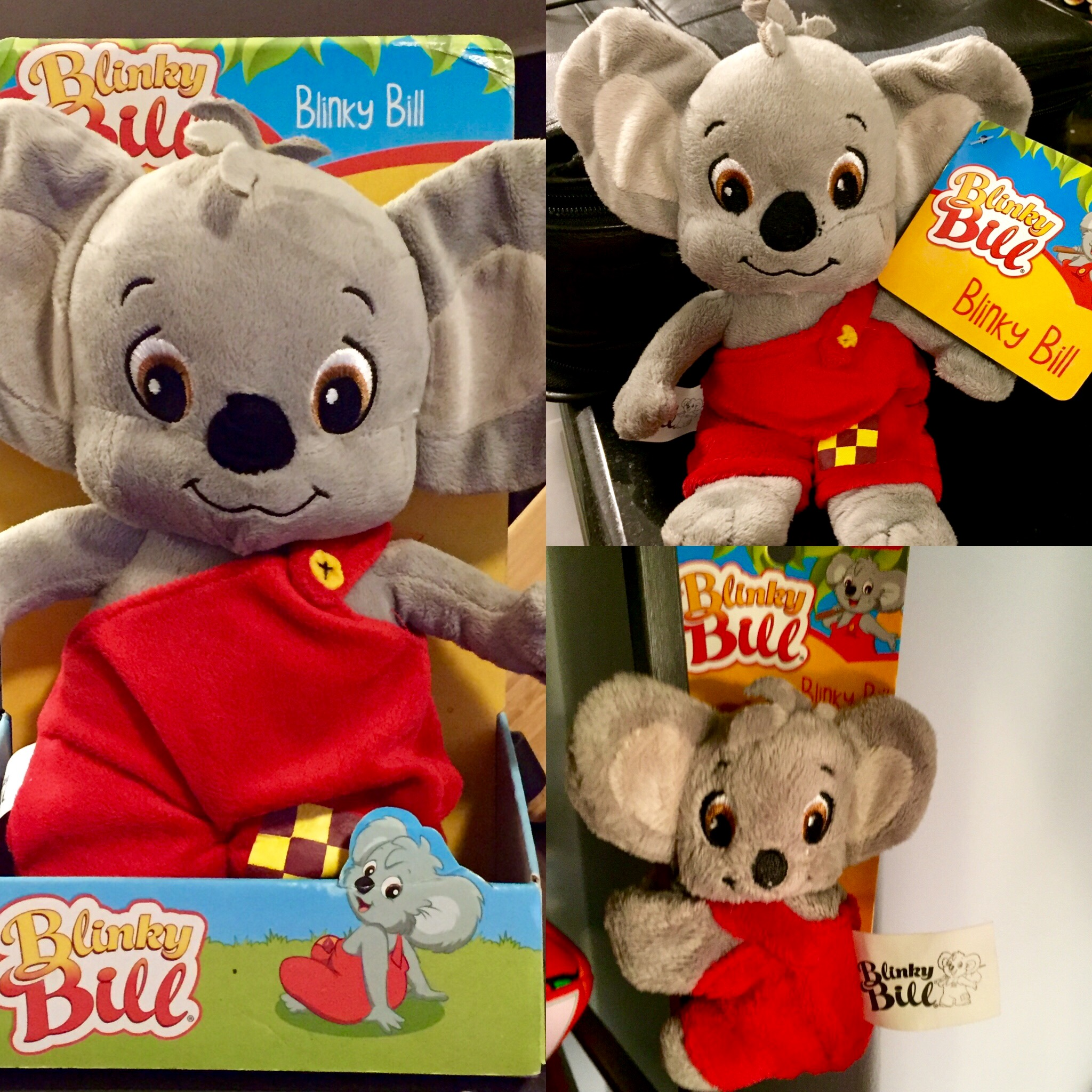 """""""Bringing Blinky Bill home to America is easier than ever!"""""""
