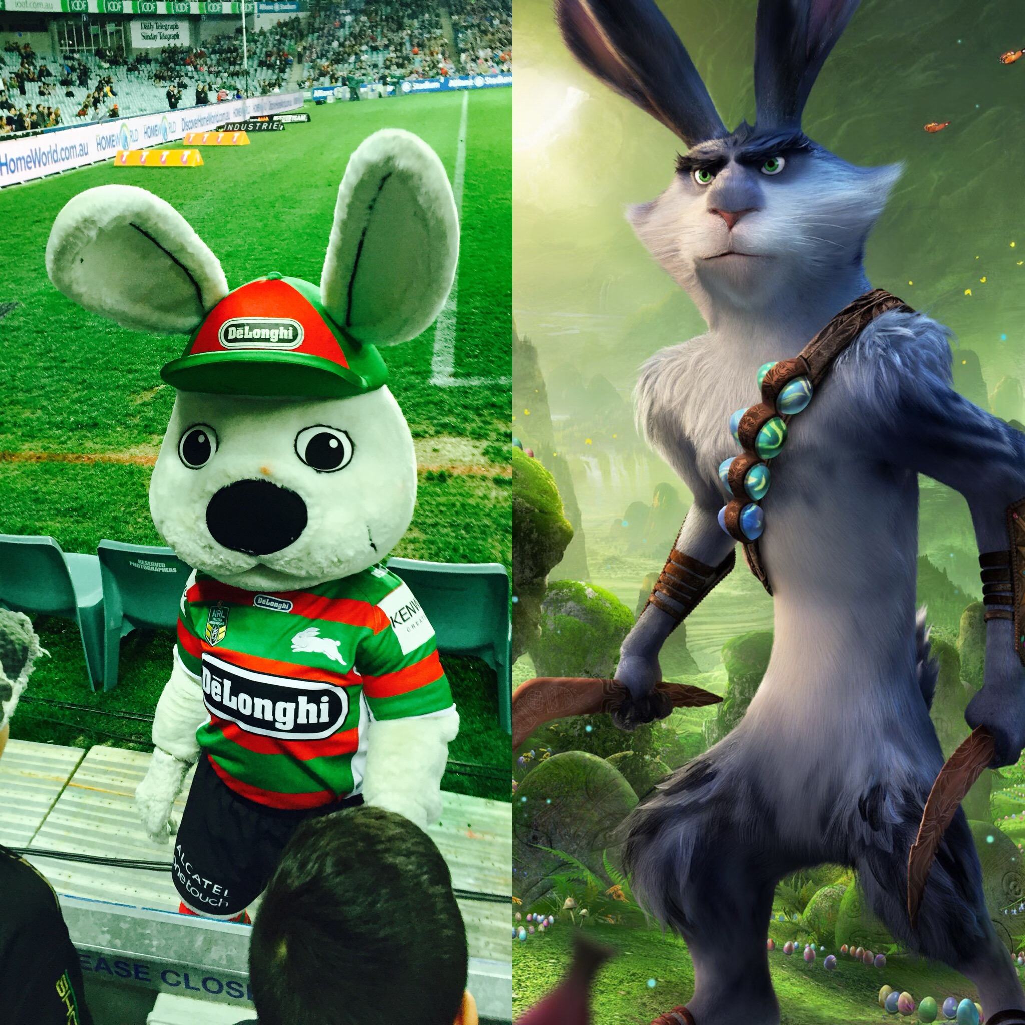 Reggie and Bunnymund: the two most legendary rabbits from Australia!
