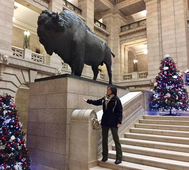 """The bison roam free inside Manitoba's capitol!"""